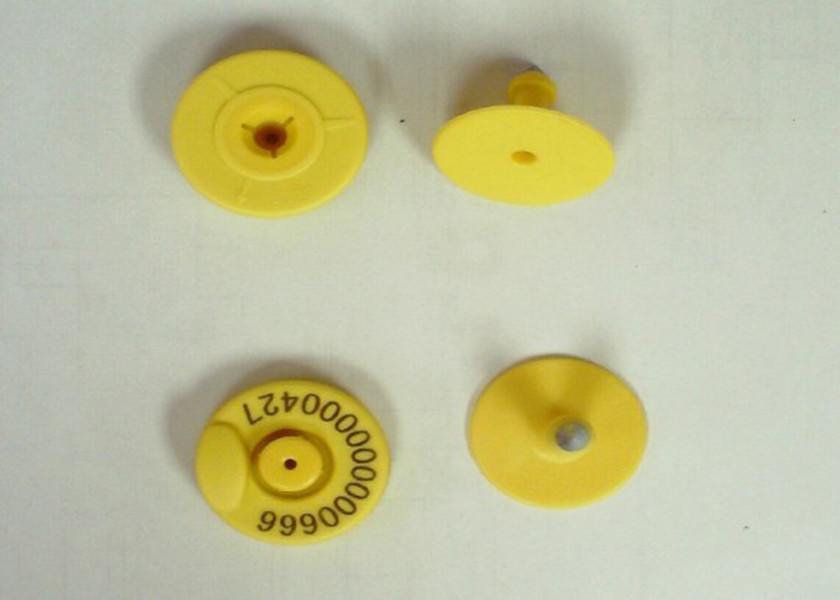 RFID Livestock Electronic Ear Tags For Cattle / Sheep , 134.2 Khz Frequency