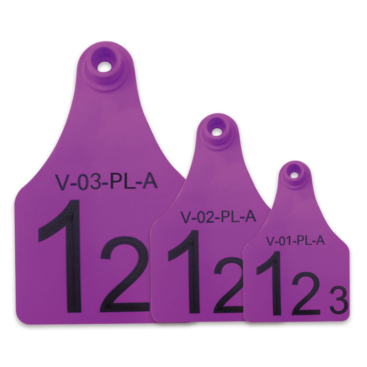 Purple Re - use Male Electronic Ear Tags For Divisional Management Of Animals